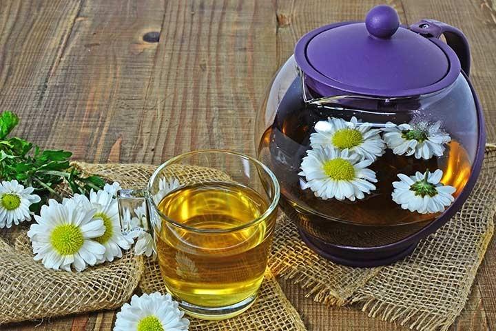 چای گل داوودی